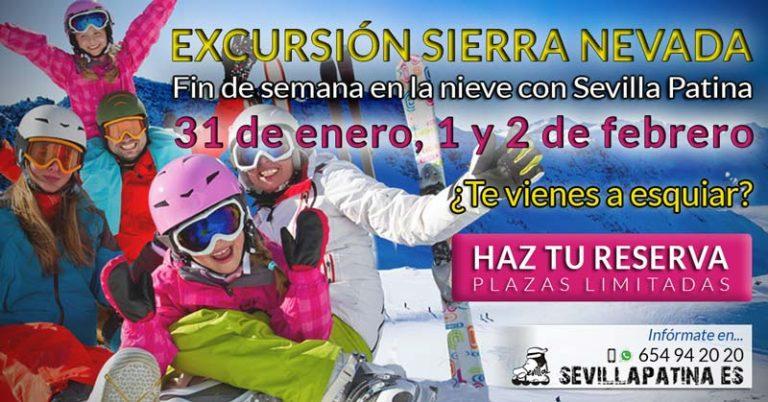 Excursión a Sierra Nevada 2020 con Sevilla Patina